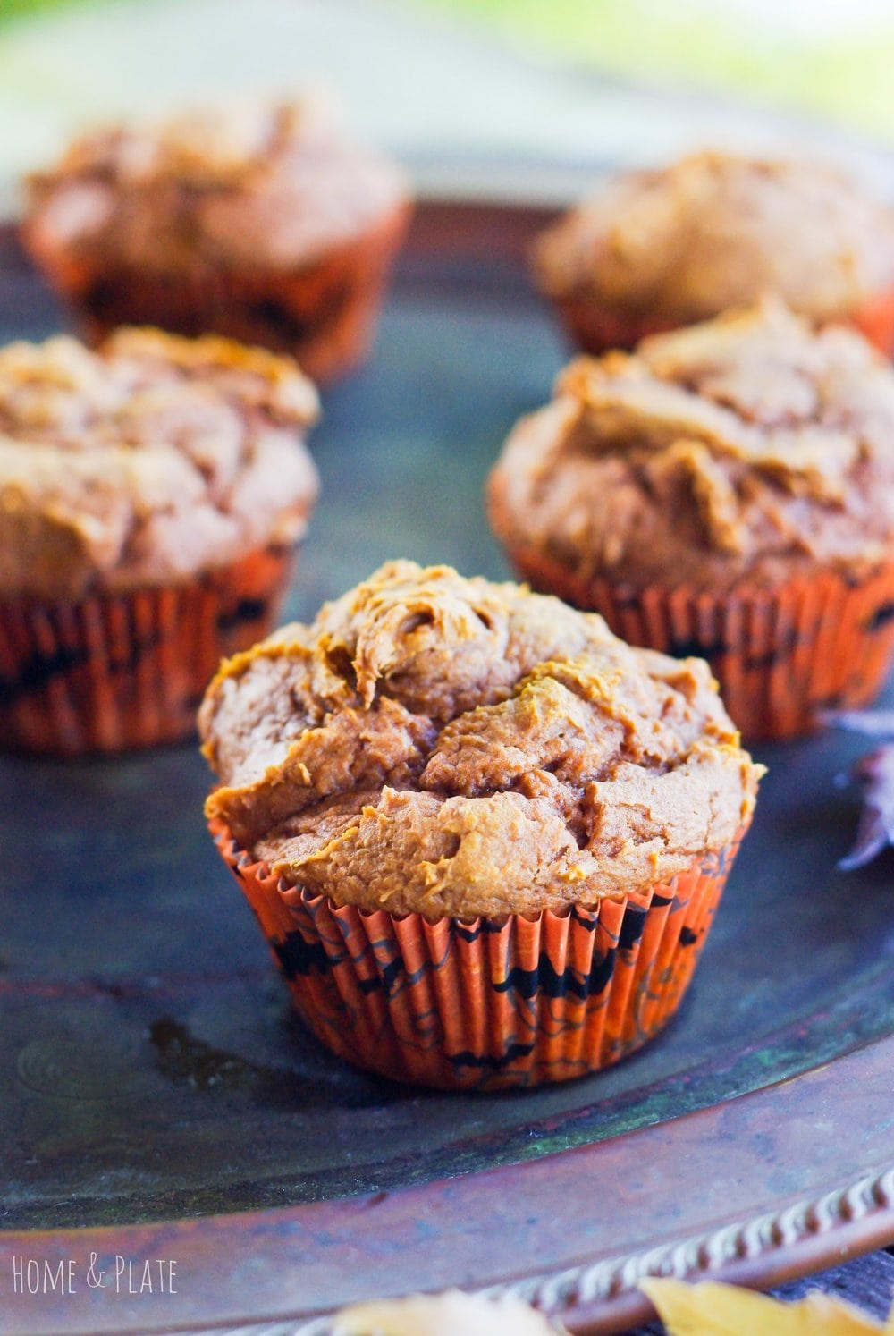 Allergy Safe Pumpkin Muffins ( 2 Ingredients)
