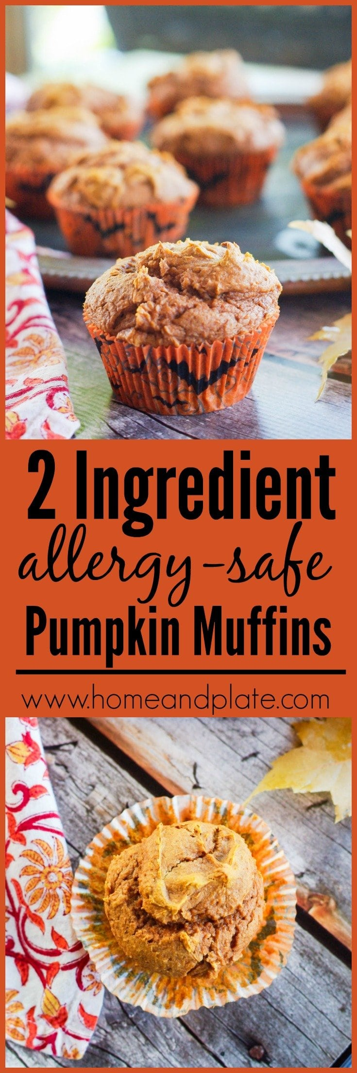 Two Ingredient Allergy Safe Pumpkin Muffins | www.homeandplate.com | Be the hero of your child