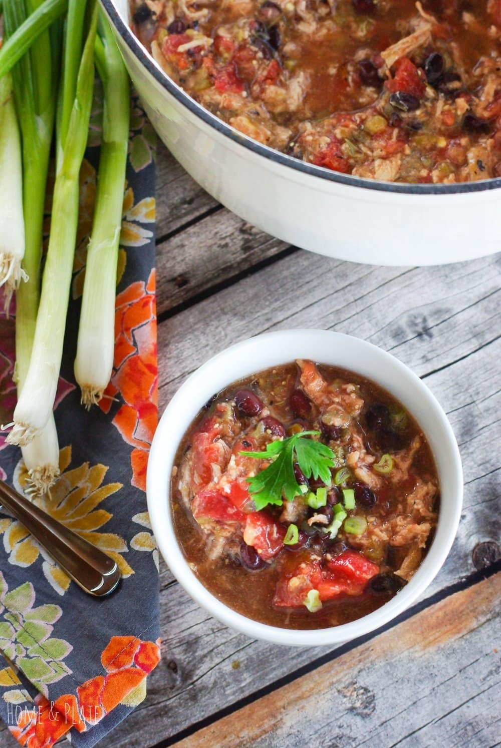 Tex-Mex Pork Stew