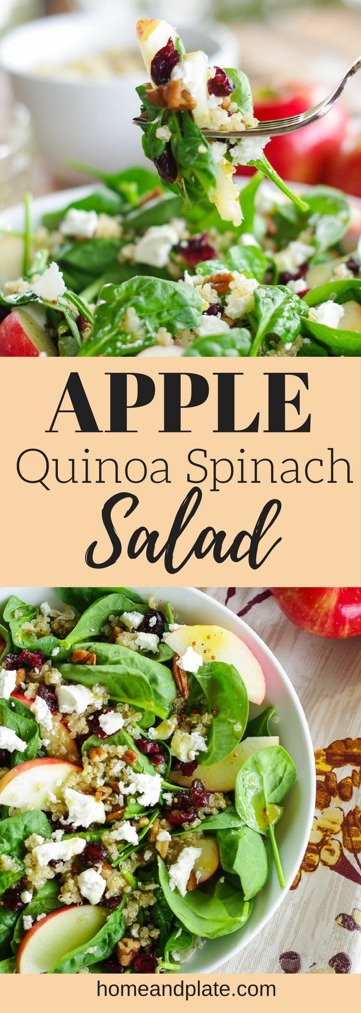 Apple Quinoa Spinach Salad | Turn an ordinary salad into a power spinach salad by adding protein-packed quinoa and fiber rich apples and pecans. | www.homeandplate.com | #powersalad