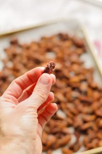 How To Make Churro Almonds