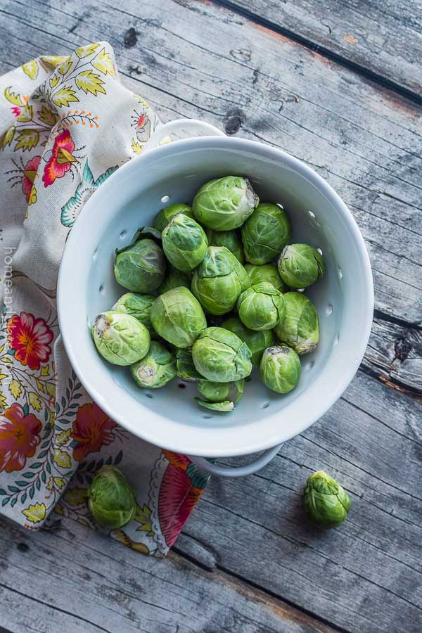 Overhead shot of fresh sprouts in a white colander